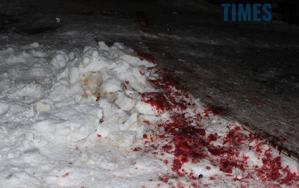 на снігу1 - Чи буде врегульовано питання видобутку бурштину на Житомирщині?