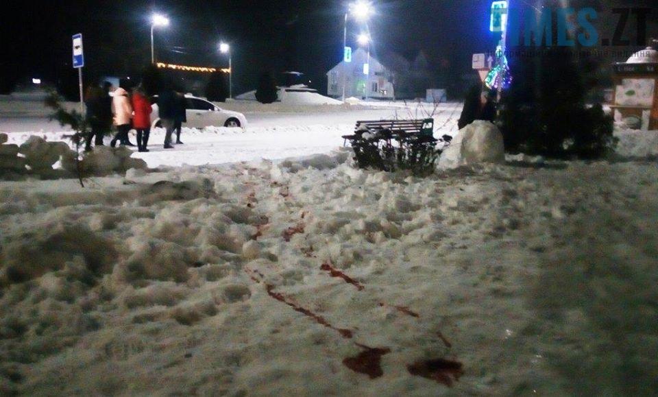 на снігу2 - Чи буде врегульовано питання видобутку бурштину на Житомирщині?