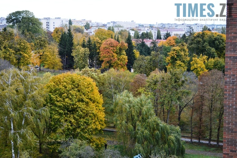 15 - ЖК  «Преміум-Парк»  запрошує  житомирян  на  Всеукраїнський  правовий  диктант