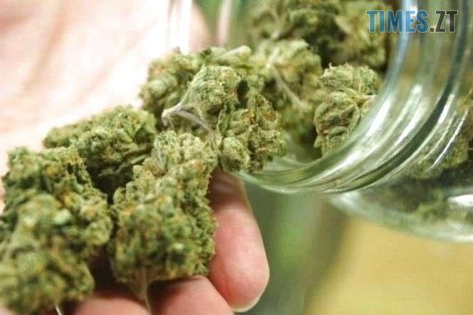 6 main e1572621929264 - Поза законом: марихуана в Україні досі недосяжна тим, хто її справді потребує