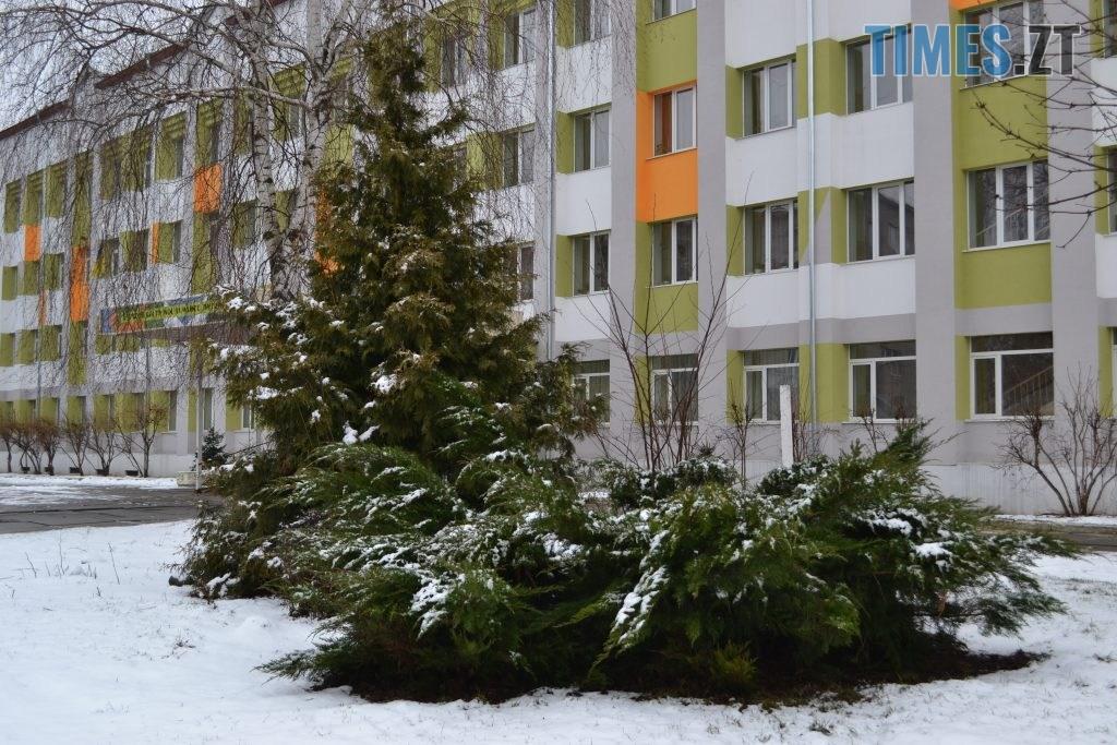 DSC 0010 10 1024x683 - У Житомир ненадовго зазирнула зима(ФОТО)