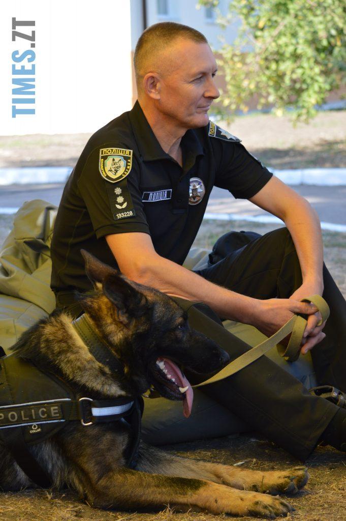 DSC 0020 e1568113291838 681x1024 - В Житомирі службові собаки змагаються в чемпіонаті з багатоборства кінологів (ФОТО)