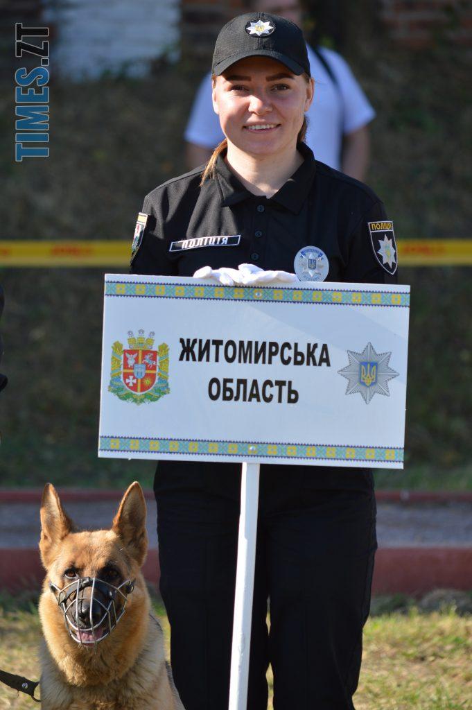 DSC 0054 e1568113202249 681x1024 - В Житомирі службові собаки змагаються в чемпіонаті з багатоборства кінологів (ФОТО)