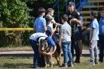 DSC 0159 150x100 - В Житомирі службові собаки змагаються в чемпіонаті з багатоборства кінологів (ФОТО)