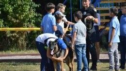 DSC 0159 260x146 - В Житомирі службові собаки змагаються в чемпіонаті з багатоборства кінологів (ФОТО)