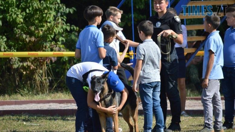DSC 0159 777x437 - В Житомирі службові собаки змагаються в чемпіонаті з багатоборства кінологів (ФОТО)