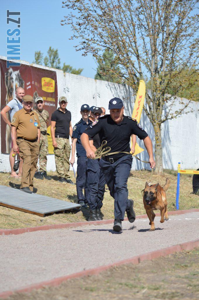 DSC 0173 e1568113163931 681x1024 - В Житомирі службові собаки змагаються в чемпіонаті з багатоборства кінологів (ФОТО)