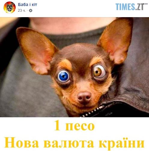 """Screenshot 20 - """"Собака""""-Брагар та песо-валюта: соцмережі потішаються над недоумком-""""слугою""""(БАГАТО МЕМІВ)"""