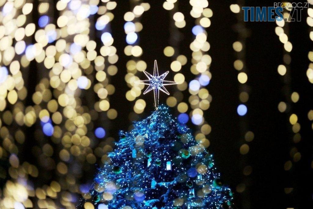 img1543939644 1024x683 - Житомирські депутати планують витратити майже 1,5 млн грн на новорічні свята в місті
