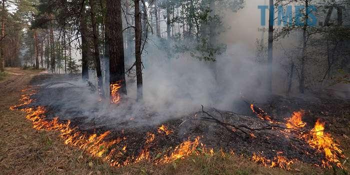 На Житомирщині горять ліси