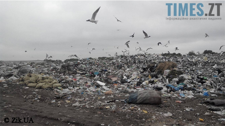 Сміттєзвалище у Бердичеві | TIMES.ZT