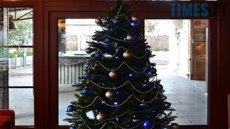 17 1 - Заклади Житомира, які працюють 1 січня та чекають на відвідувачів