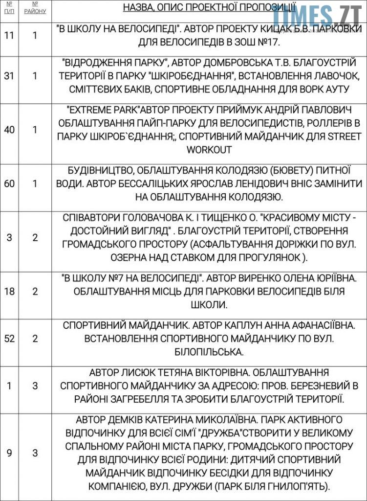 Picture 17 1 751x1024 - Бюджет участі в Бердичеві: шанс на зміни чи грандіозна афера?