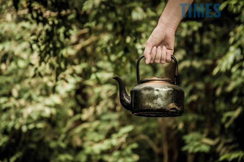 4 - «Друге життя» лісових красунь: що робити з ялинкою після свят?