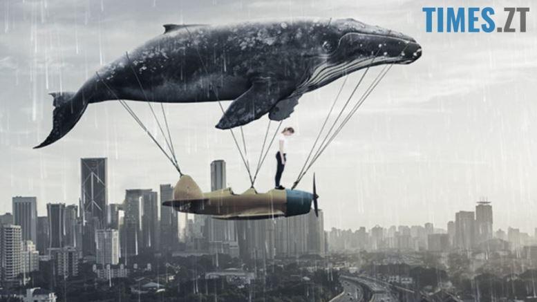 Дитяче та підліткове самогубство - гра Синій кит   TIMES.ZT