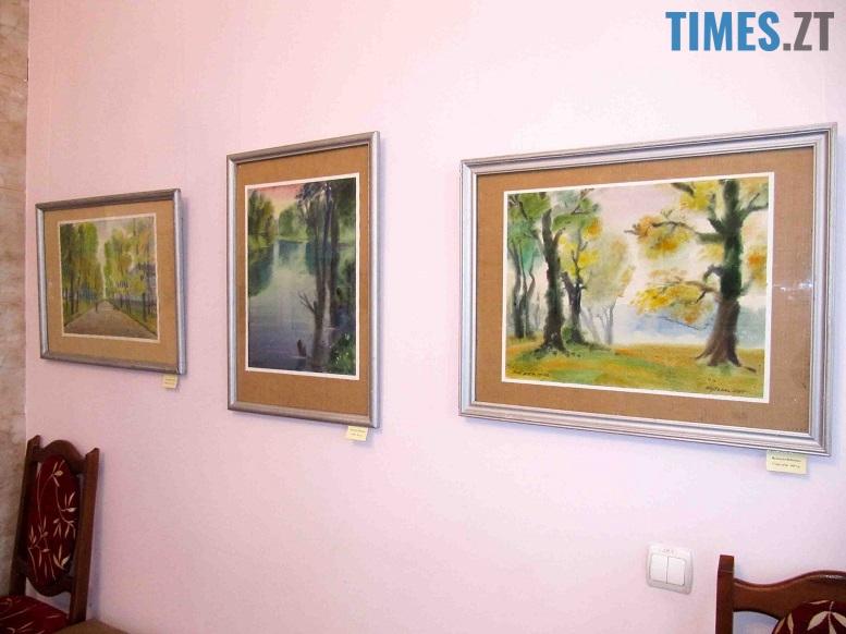 Картинна галерея у Житомирському літературному музеї | TIMES.ZT