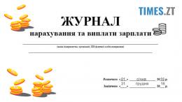 preview 260x146 - Скільки заробили за 2016 рік міські голови Житомирщини?