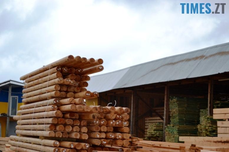 2 17 - Зубко пообіцяв захистити ліс у Зарічанах, який нищать місцеві «феодали» (відео)