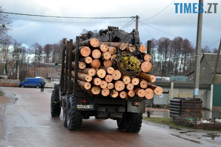 5 11 - Зубко пообіцяв захистити ліс у Зарічанах, який нищать місцеві «феодали» (відео)
