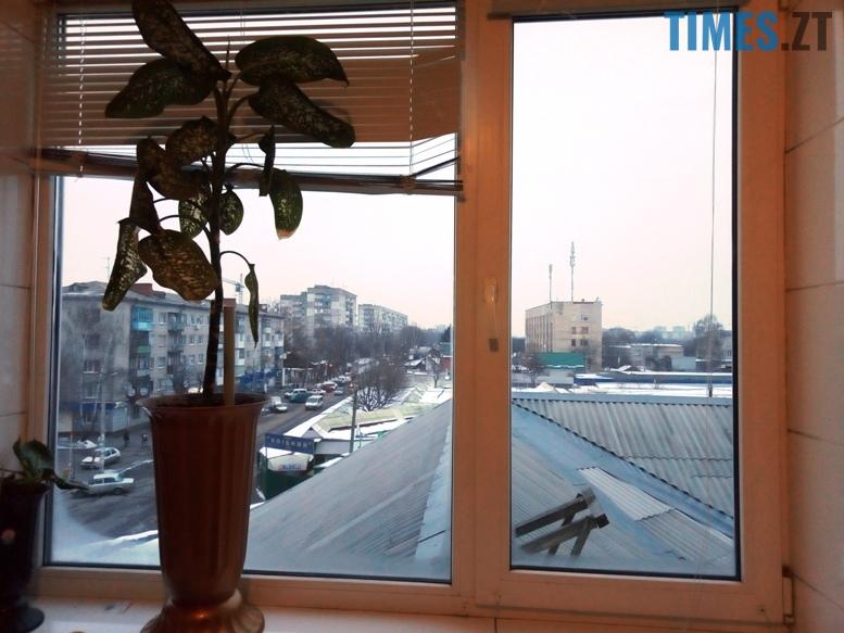Тренажерний зал Muscle Hulk - вигляд з вікна | TIMES.ZT