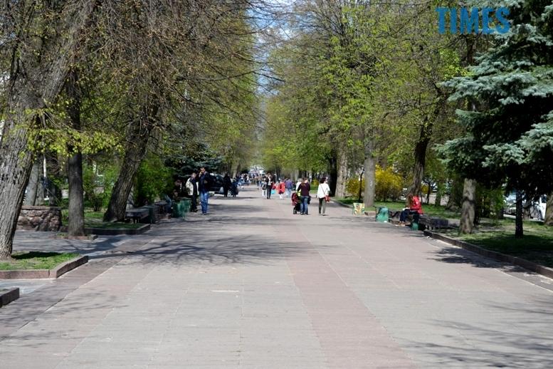 14 2 - Городяни не знають, що таке магнолії і де вони ростуть у Житомирі
