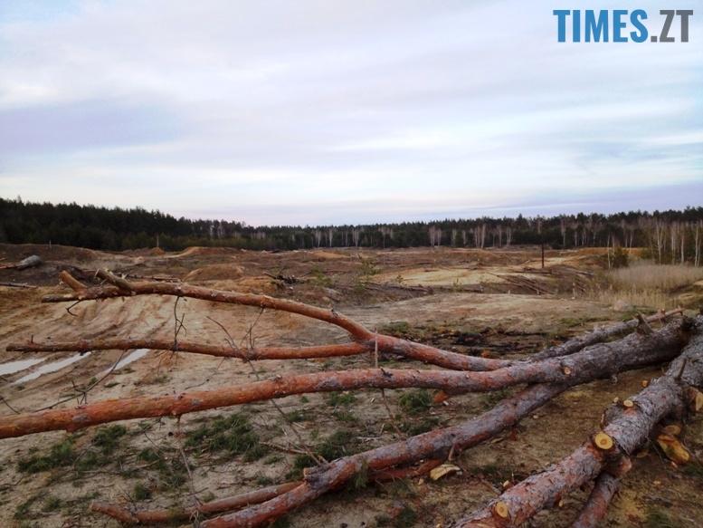 2 12 - Пустеля під Коростишевом: чиновники та гендлярі нищать ліс заради піску (фото, відео)