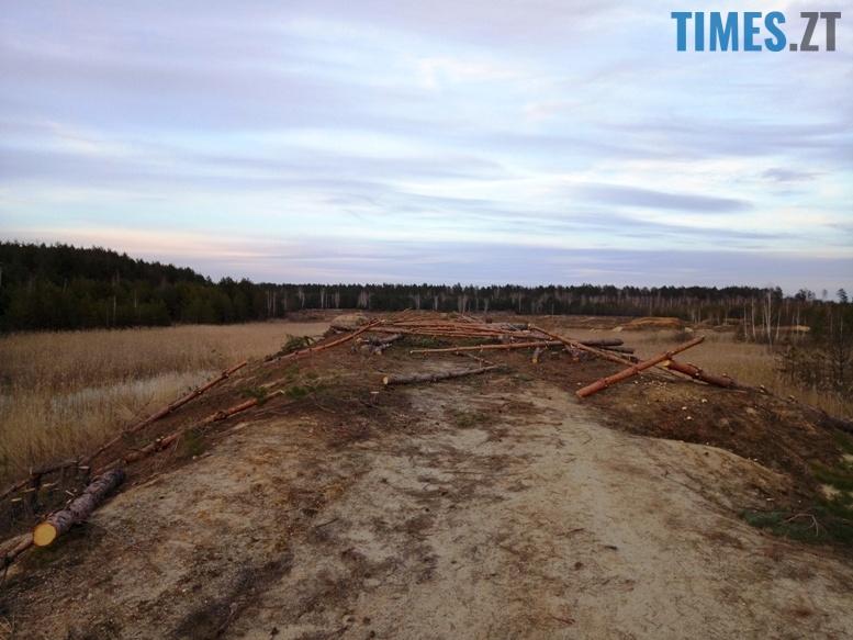 3 12 - Пустеля під Коростишевом: чиновники та гендлярі нищать ліс заради піску (фото, відео)