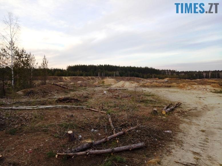 5 9 - Пустеля під Коростишевом: чиновники та гендлярі нищать ліс заради піску (фото, відео)