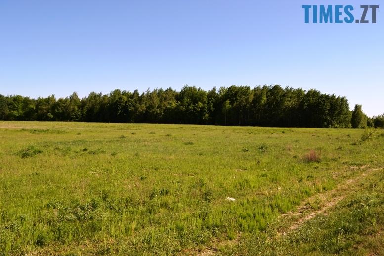 3 5 - Учасникам АТО виділили земельні ділянки – а на них ще й кіт не валявся…