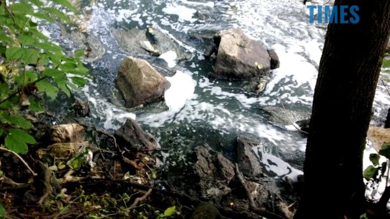 IMG 3886 - SOS! У Кам'янку зливають смердючі відходи!