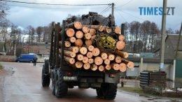 1 2 260x146 - Як зарічанський ліс зникає у кишенях місцевих «феодалів» (частина І)