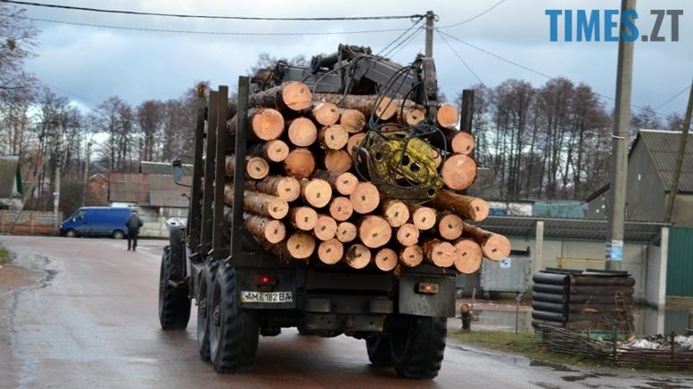 1 2 - Як зарічанський ліс зникає у кишенях місцевих «феодалів» (частина І)
