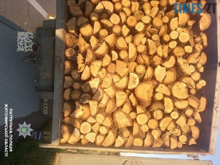 затримана вантажівка - Мародерів, які нищать ліси України, хочуть «садити» довічно (фото, відео)
