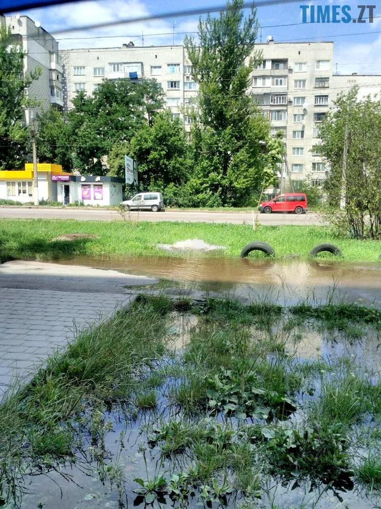 2 3 - У Житомирі дали воду. На Короленка самовільно відкрився новий фонтан (відео, фото)