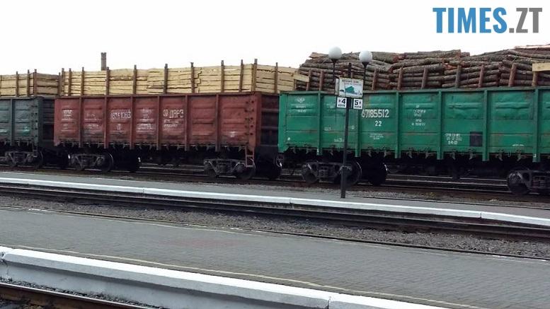 17904289 1901792270097876 3971742789153121053 n - Мародерів, які нищать ліси України, хочуть «садити» довічно (фото, відео)