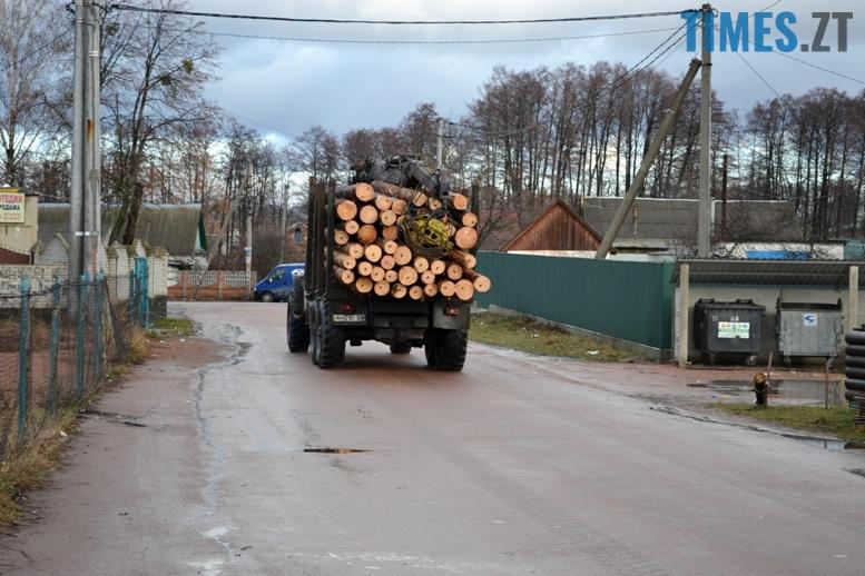 DSC 0955 - Як зарічанський ліс зникає у кишенях місцевих «феодалів» (частина І)