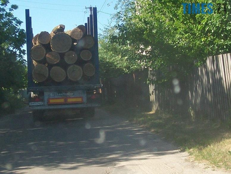 IMG 1 - Мародерів, які нищать ліси України, хочуть «садити» довічно (фото, відео)