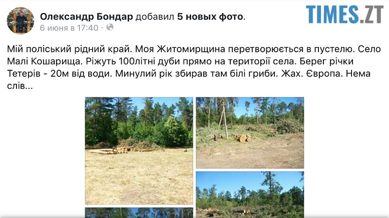 IMG 4734 - Мародерів, які нищать ліси України, хочуть «садити» довічно (фото, відео)