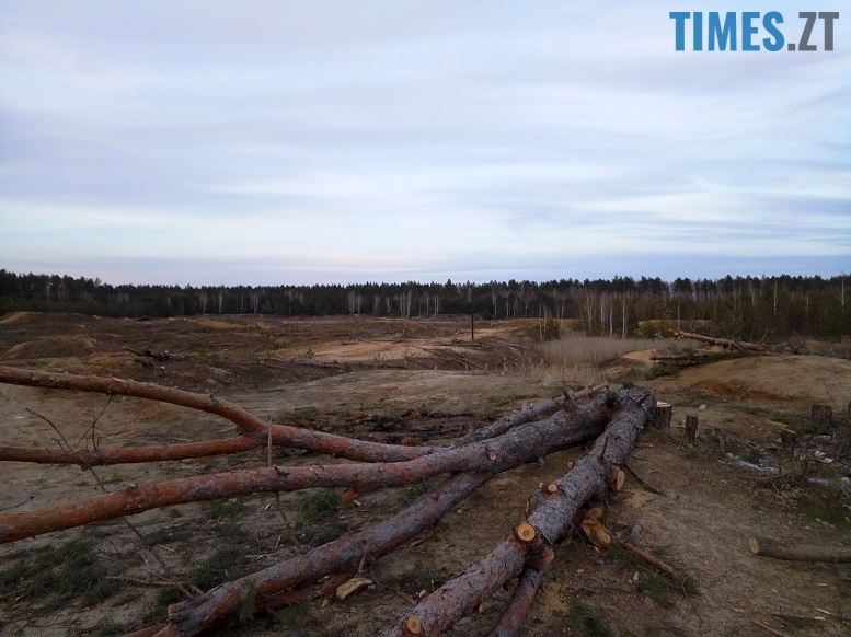 IMG 6661 - Мародерів, які нищать ліси України, хочуть «садити» довічно (фото, відео)