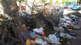 260x146 - Житомиряни скаржаться на стихійний смітник посеред вулиці Івана Мазепи: як вирішити проблему (ФОТО)