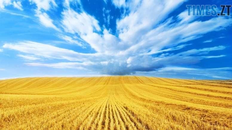 .jpg - День прапора та День Незалежності: що чекає на житомирян та гостей міста (ПРОГРАМА)