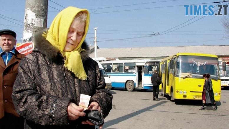 1303393179 31 - Житомирські пільговики можуть безкоштовно їздити у маршрутках без часових обмежень (ДОКУМЕНТ)