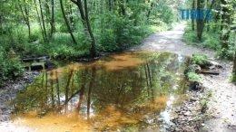 202241 original 260x146 - Поблизу Коростишева знайшли обгоріле тіло невідомого чоловіка (ФОТО)