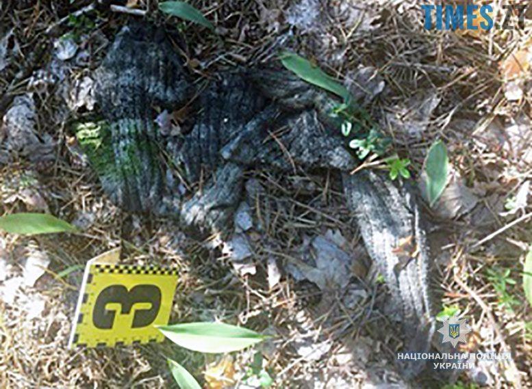 3rozshuk - Поблизу Коростишева знайшли обгоріле тіло невідомого чоловіка (ФОТО)