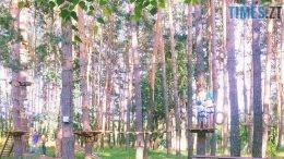 gidropark dereva 260x146 - Житомиряни просять міську владу висадити нові дерева у Гідропарку