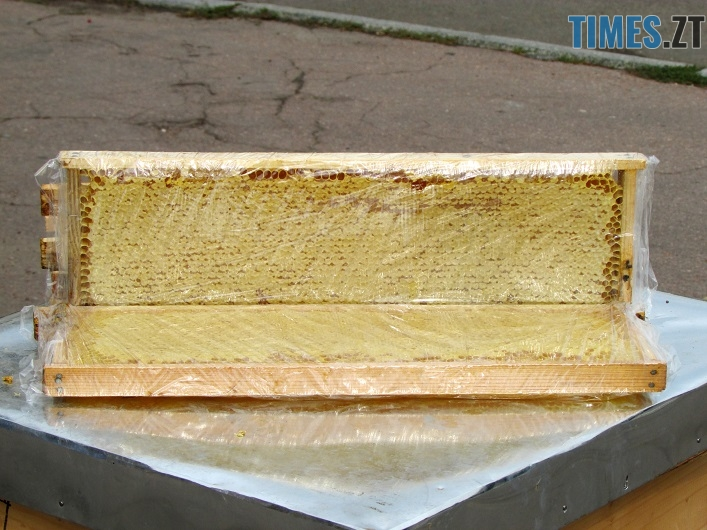 med 14 - Вперше за 10 років у Житомирі відбувся обласний ярмарок меду (ФОТО)