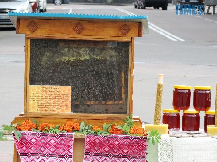 med 16 - Вперше за 10 років у Житомирі відбувся обласний ярмарок меду (ФОТО)