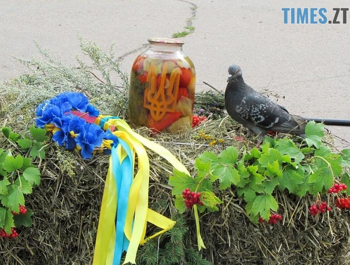 med 19 - Вперше за 10 років у Житомирі відбувся обласний ярмарок меду (ФОТО)