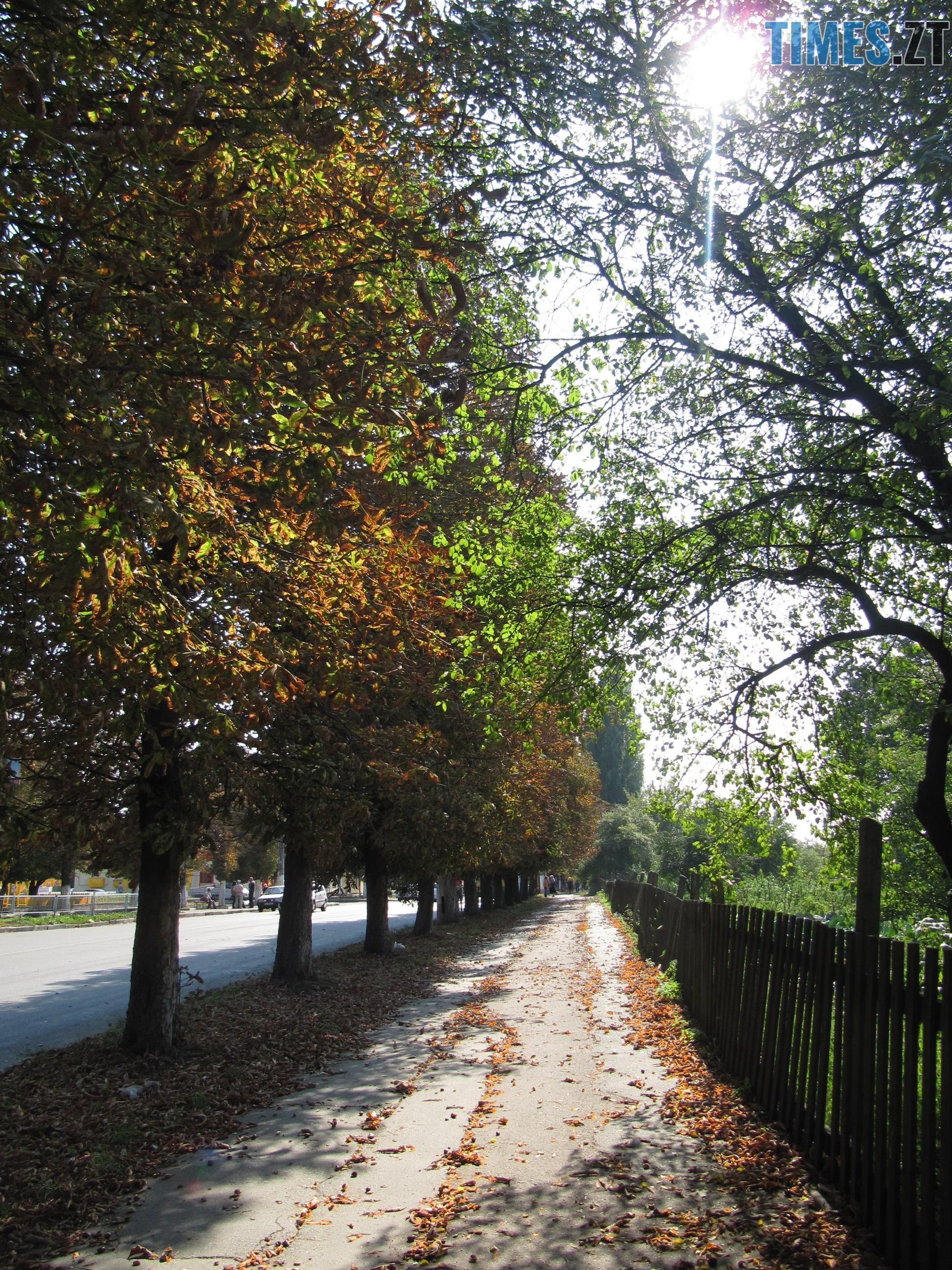 Т. Ріхтер 1 - Осіннє рівнодення: осінь вступила в законні права (ФОТО)