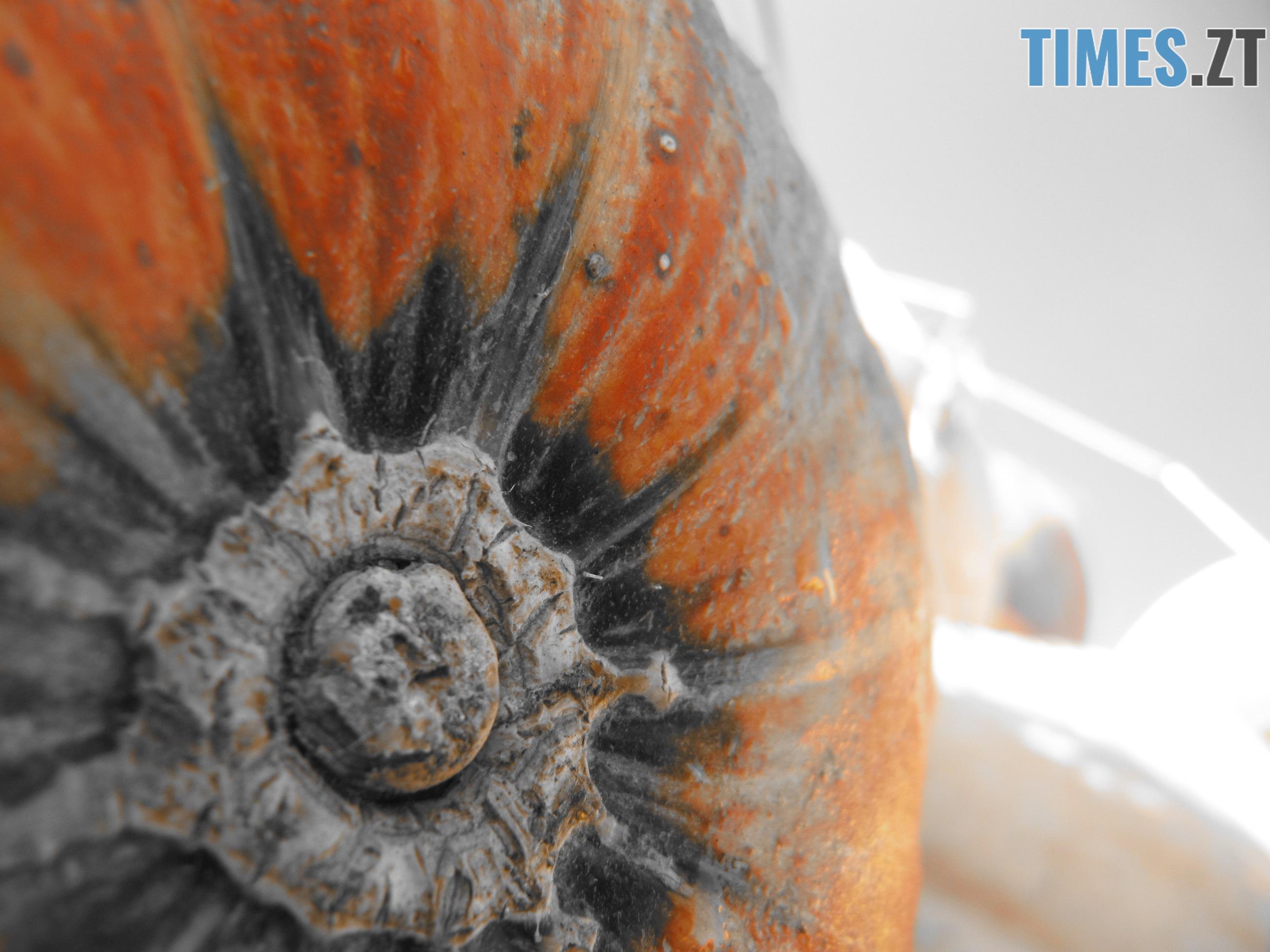 Т. Ріхтер 3 - Осіннє рівнодення: осінь вступила в законні права (ФОТО)